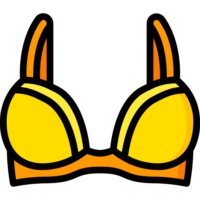 brassiere.png
